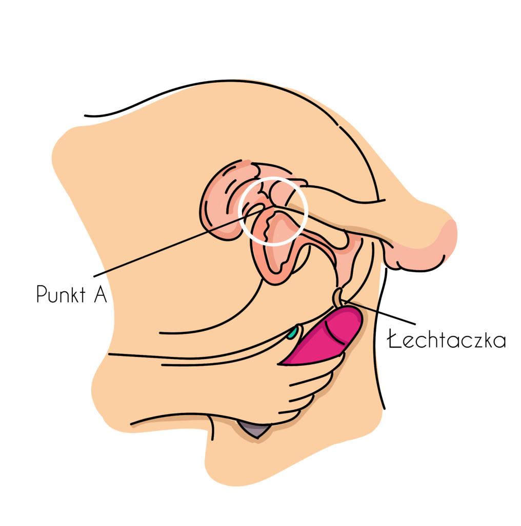 duży penis i pochwa
